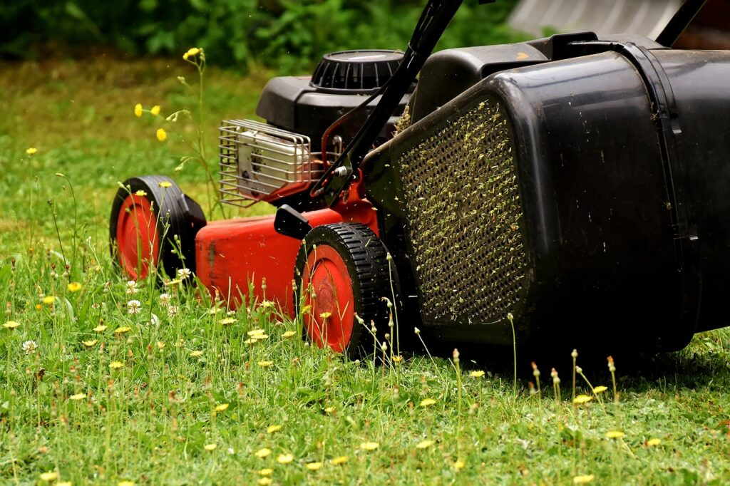 lawn mower, mow, lawn mowing